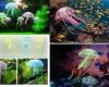 Umelá medúza - perfektná ozdoba akvária